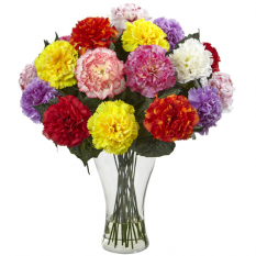 send 18 pcs. mixed color carnation in vase to manila