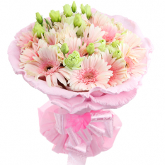 delivery 12 pcs. pink gerberas in bouquet to manila