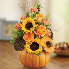 send halloween pumpkin n' posies send to manila