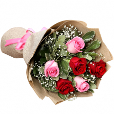 send half dozen red and pink ecuadorian roses to manila