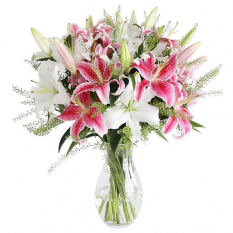 send dozen of pink and white lilies in vase to manila