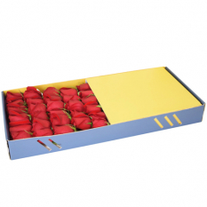 send 2 dozen red color rose in box to manila