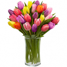 send 15 pcs mixed multicolor tulips in glass vase to manila