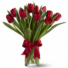 send 1 dozen fresh Holland red tulips in vase to manila