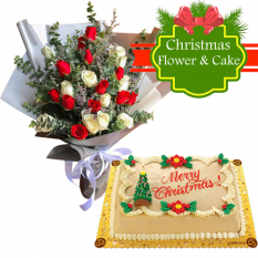 send  24 mixed roses with christmas greeting cake to philippines