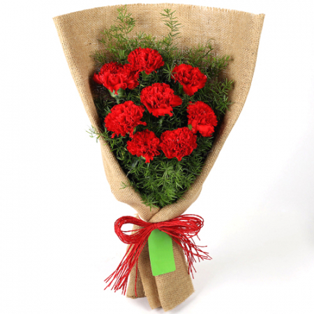 send 8 pcs. carnation in gorgeous bouquet to manila