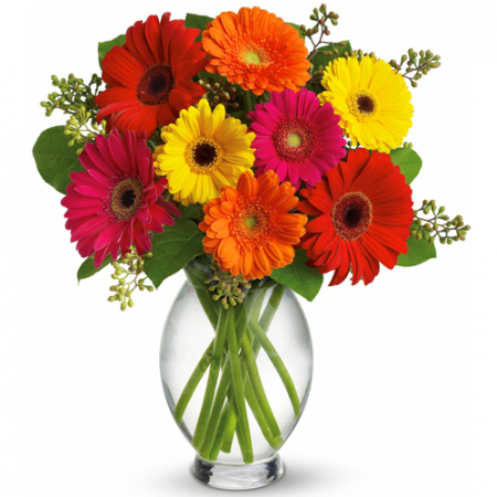 send 10 pcs mixed gerbera in a vase to manila