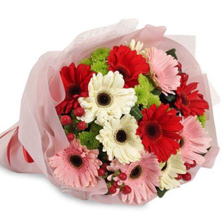 send 8 pcs. mixed color gerberas in a bouquet to manila