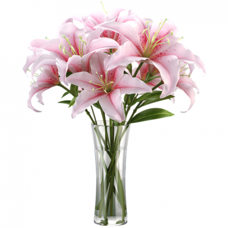 delivery one dozen pink lilies in vase to manila