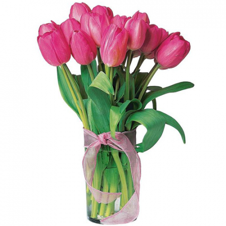 send 12 holland fresh Pink tulips in vase to manila