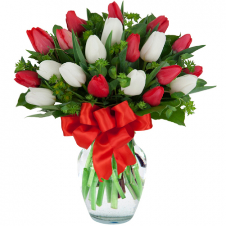 send 20 mixed red and white tulips in vase to manila