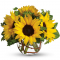 send 5 pcs sunflower In vase to manila